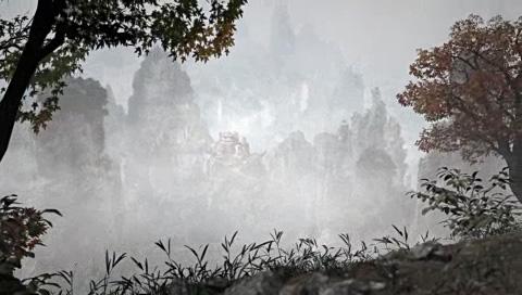 山中の風景