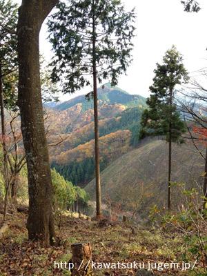 御岳山〜日の出山〜つるつる温泉