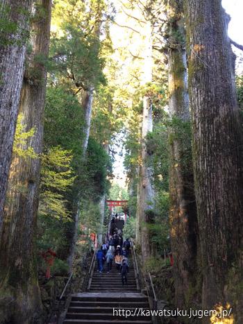 箱根旧街道ハイキング