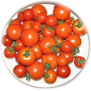 ミニ中トマト