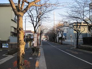 清掃工場への道