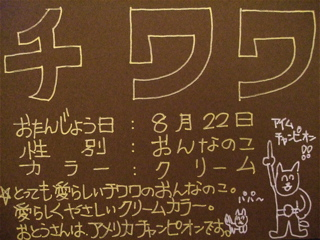 20070930チワワ0822-4