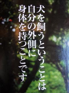 押井守氏『犬を飼うということは…』2