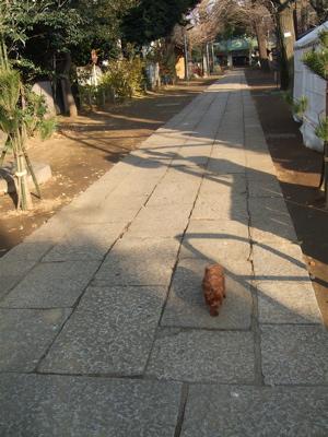 20071226-8『帰るの〜?』
