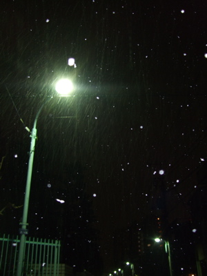 20080117初雪3-300