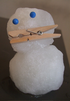 20080123雪だるまくん1