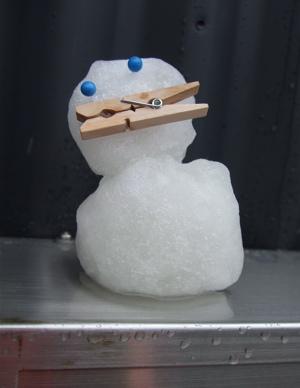 20080123雪だるまくん6