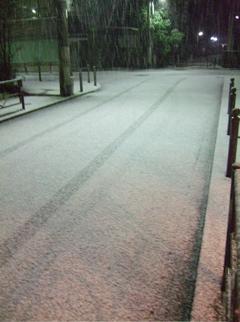 20080209雪4