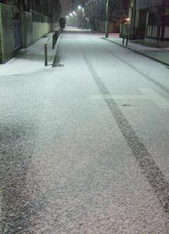 20080209雪3