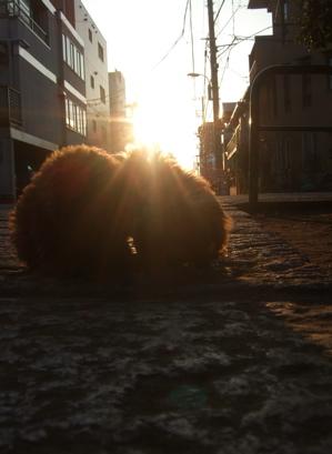 20080211夕日4