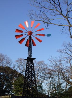 20080218横浜7