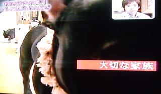 20080307槙原さん3