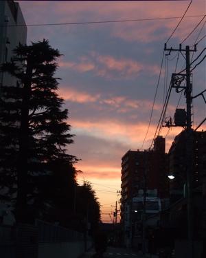 20080309夕焼け1