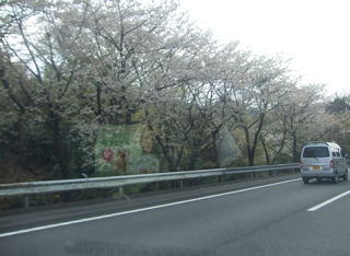 20080403-04名古屋29