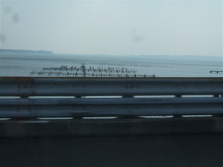 20080403-04名古屋31