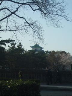 20080403-04名古屋52