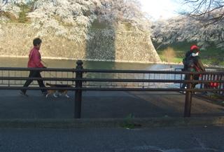 20080403-04名古屋56