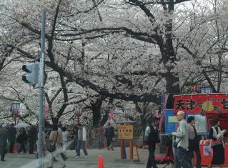 20080403-04名古屋97