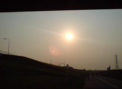 20080429荒川の土手3