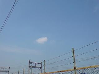20080515おさんぽ日和4