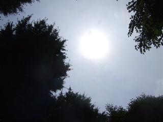 20080607天気がよくって気持ちいい〜♪1