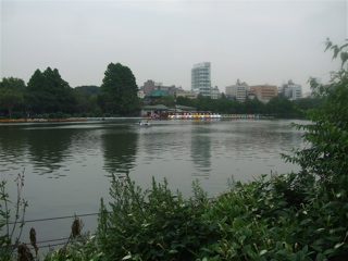 20080707上野公園不忍池のほとり1