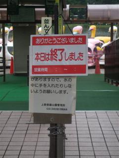 20080707上野公園不忍池のほとり11