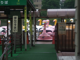 20080707上野公園不忍池のほとり12