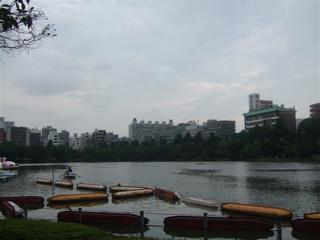 20080707上野公園不忍池のほとり15