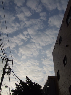 20080709AM6-1