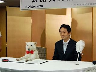 20080708ソフトバンクCM犬「カイくん」、初DVD発売で公開調印式−表参道で