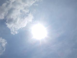 20080719天気がいいと気分もいい♪1