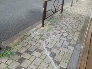 20080804水まき5