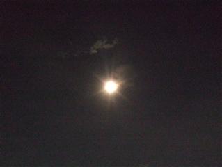 20080815夜さんぽ2
