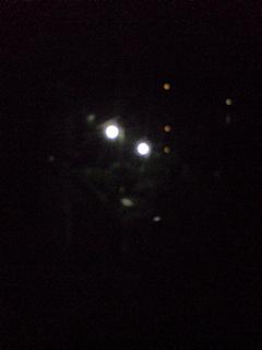 20080831深夜におさんぽ4