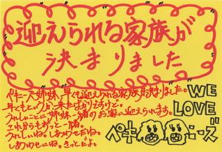 20080827ペキニーズ姉妹おめでとう1
