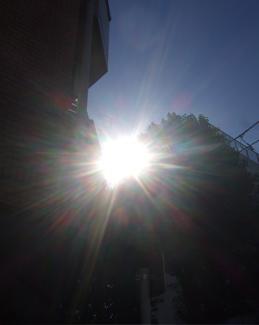20081122陽