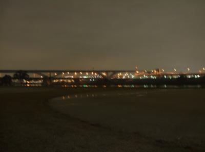 20081127荒川の土手5