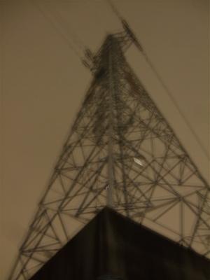 20081127荒川の土手7