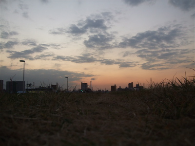 20081201荒川の土手夕焼け12
