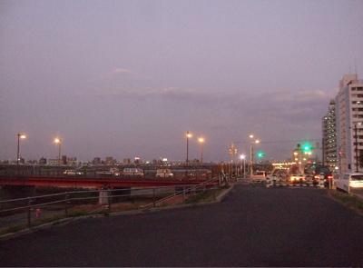 20081201荒川の土手夕焼け16