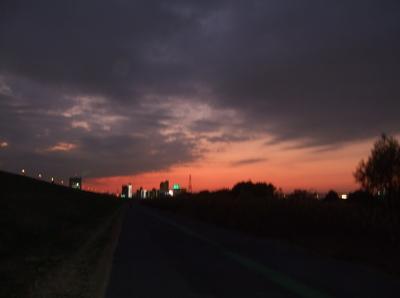 20081201荒川の土手夕焼け21