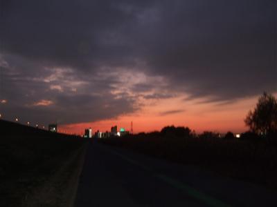 20081201荒川の土手夕焼け22