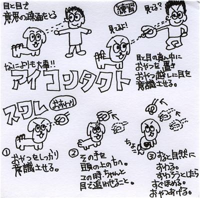 20090211 アイコンタクト マテ スワレ
