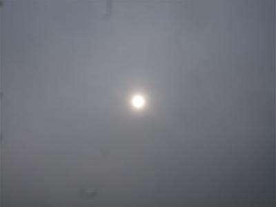 20090309荒川の土手2