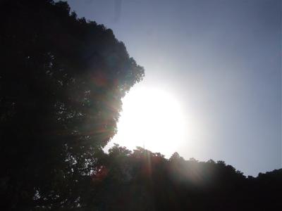 20090316横浜7