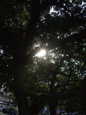 20090316横浜13