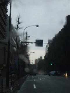 20090320あんこギッフェリ 雨上がりそう 3