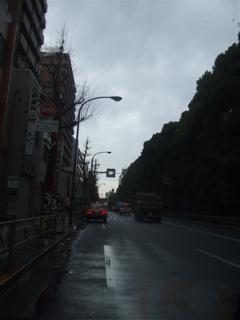20090320あんこギッフェリ 雨上がりそう 4
