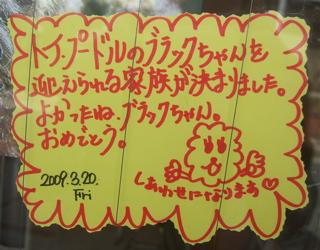 20090321ブラックちゃん、おめでとう!